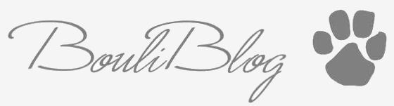 Bouliblog